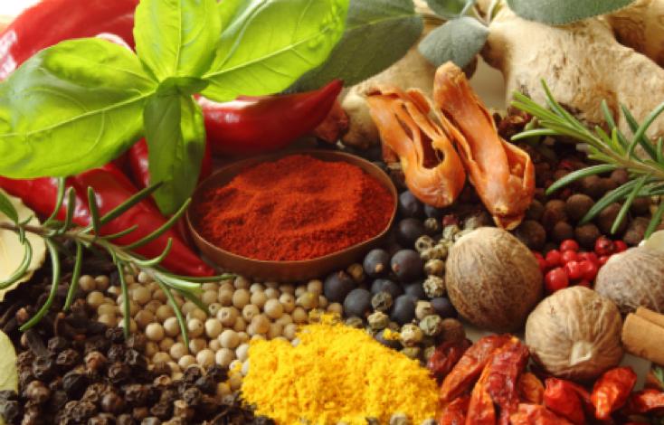 Korenie –základ každého dobrého jedla, ale i nášho zdravia