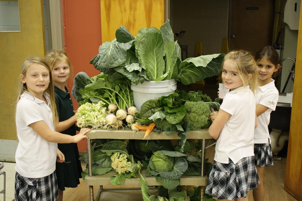 deti jedia zdravo danubius gastro a promenu.sk